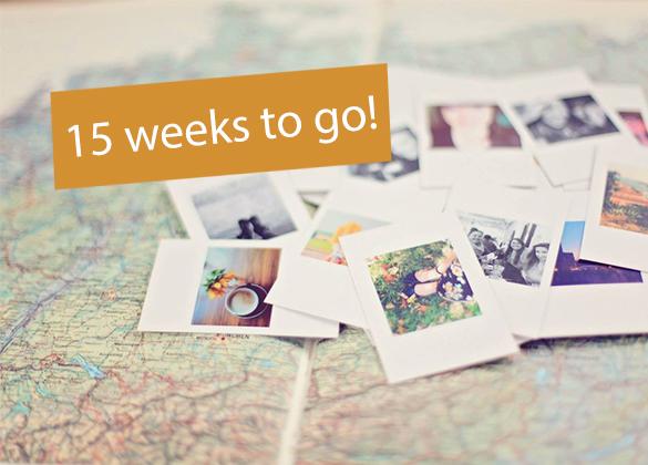 15-weeks-to-go-header