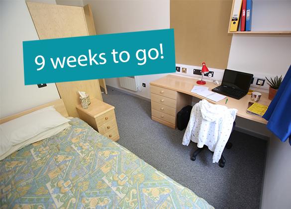 9-weeks-halls-header-image